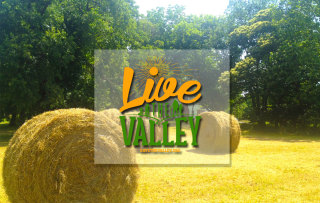 live-the-valley-banner.jpg